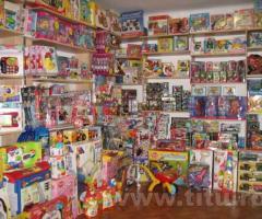 Jucarii, jocuri: copii, fete, baieti, bebelusi, bebei, logice, imaginatie, puzzle, plus-cadouri .