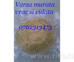 Varza alba